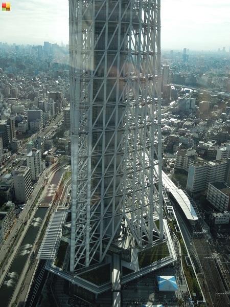 東京スカイツリーイーストタワーからの眺め